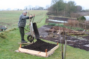 Filling a new bed on grass, one half with cardboard: the six inches of organic matter in this bed was enough to kill grass, dandelions and buttercups