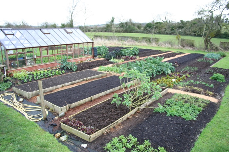 Just before Christmas, many beds mulched with compost