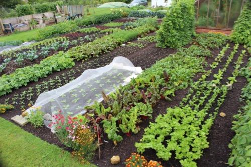 Clean garden, little time spent weeding, its much easier!