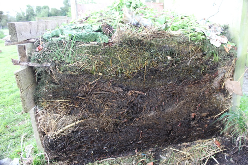 how to make compost in winter