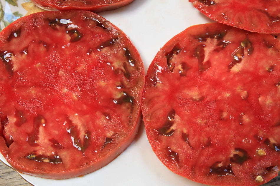 Vintage Wine tomato, seed from Karenfrom Karen: great taste, low yield