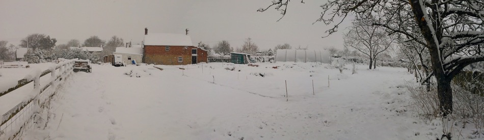 Home acres January 2013 just after I had arrived