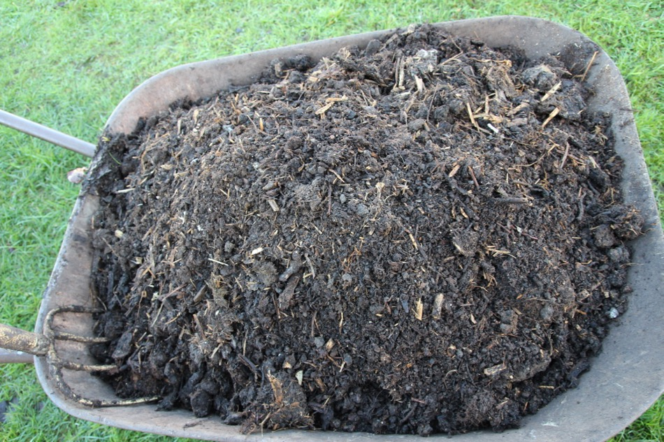January 2017 soil care, compost quality, no sowing yet!