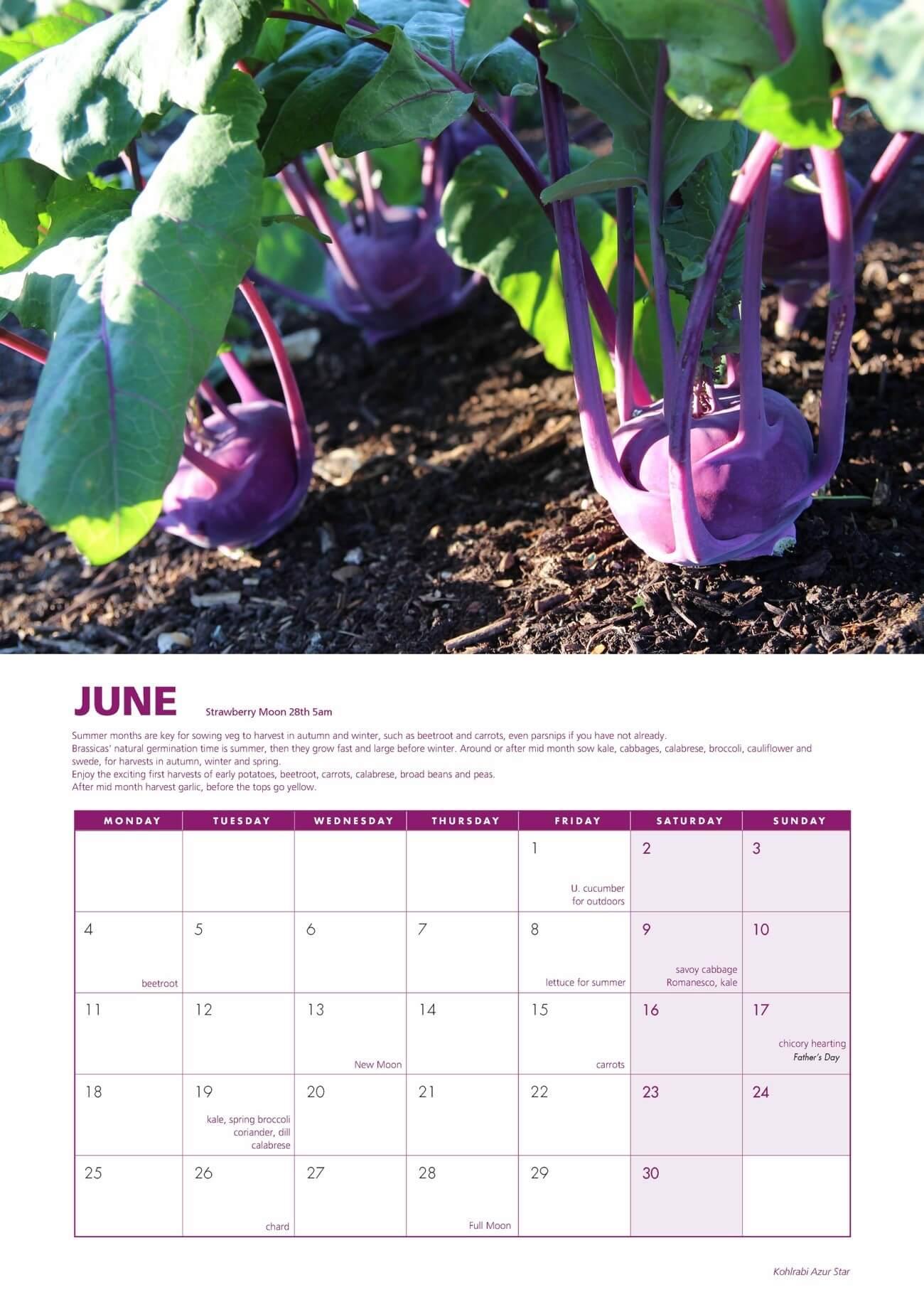 Charles dowding gardening calendar 2018 no dig organic for Gardening 2018 calendar