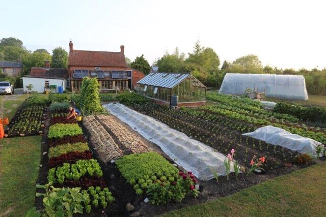 No dig garden Charles Dowding