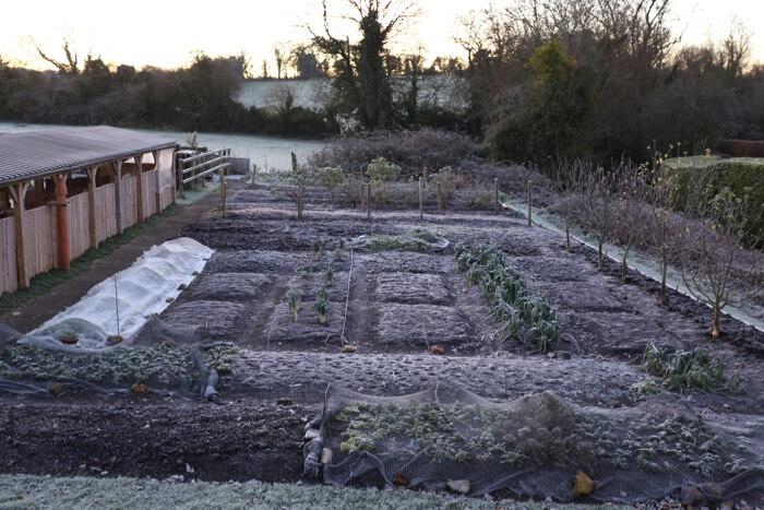 Charles Dowding no dig compost