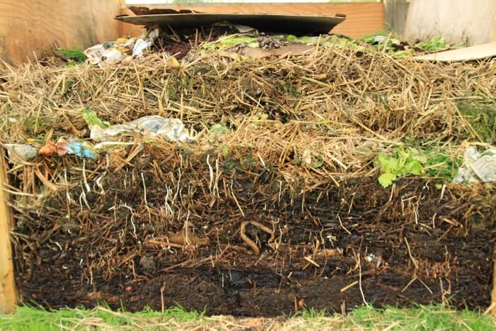 Homeacres compost heap 6 weeks, profile