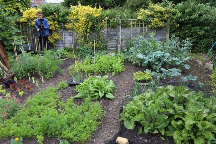 Small garden June '18 & Edward filming