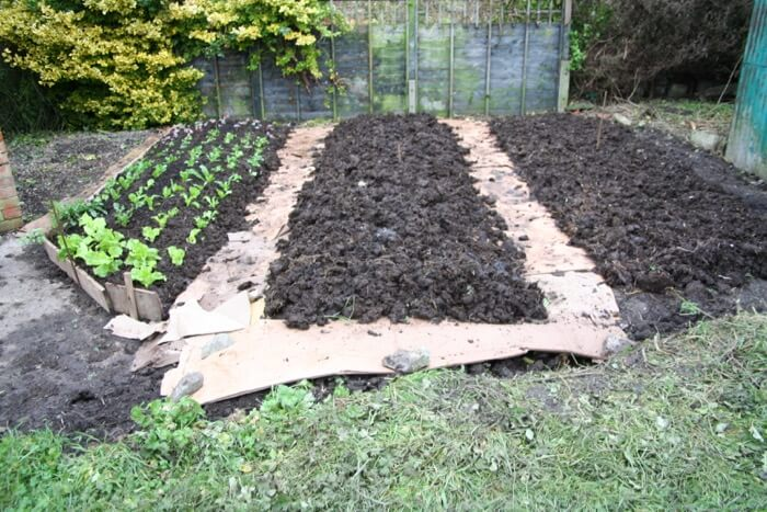 Small garden cleared & mulched, Dec '12