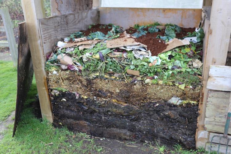 Compost heap 3 weeks Homeacres