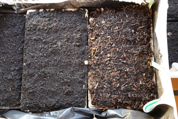 Comparing composts for potting CD