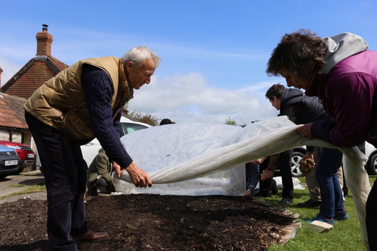 Laying fleece over the new plantings