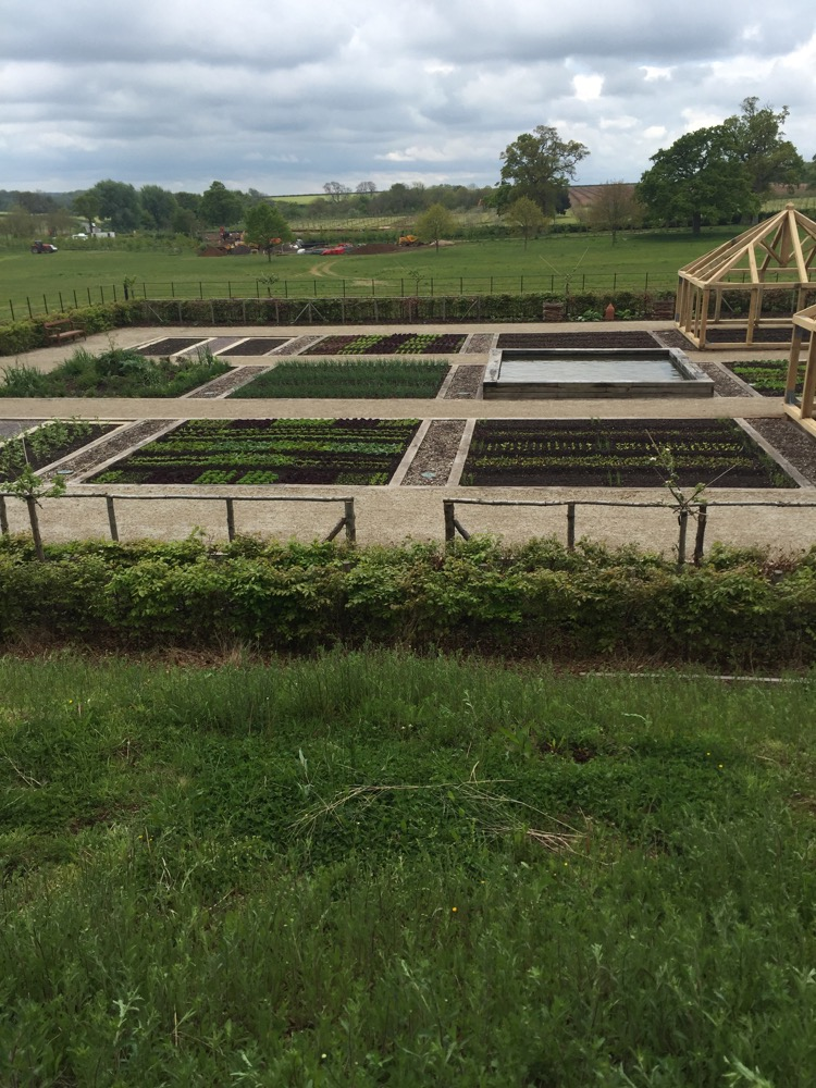 The Newt vegetable garden